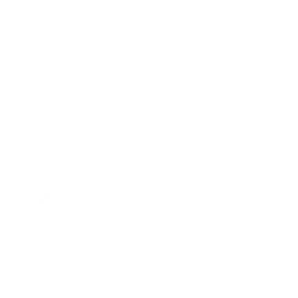 Salt City Soup